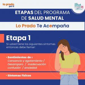 etapas_LP_te_acompaña-01